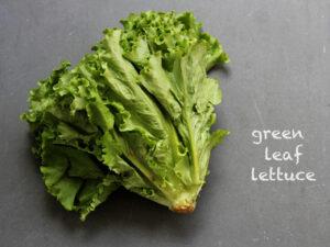 Lettuce (sold in 4-pack)
