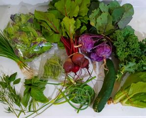 2021 Veggie Box
